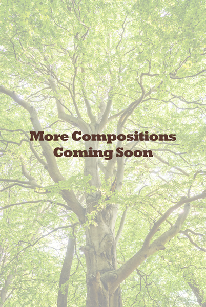 """Text """"More Compositions Coming Soon"""" over a very branchey tree"""