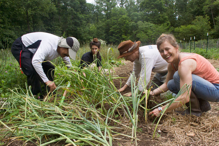 Cooperative Gardening and Permaculture Strategies, April 2021