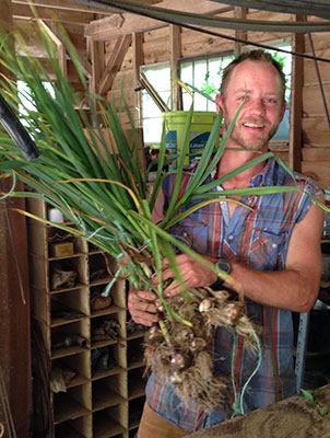 Farmer Joseph carrying bundles of garlic at Earthaven Experience week