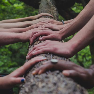 many hands on a log